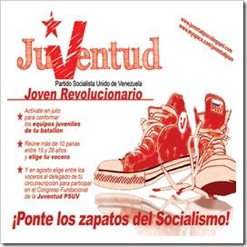 """""""Ponte los zapatos (Converse alike) del socialismo"""""""